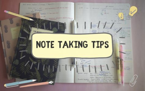 Haley's Tips for Success: Taking Notes