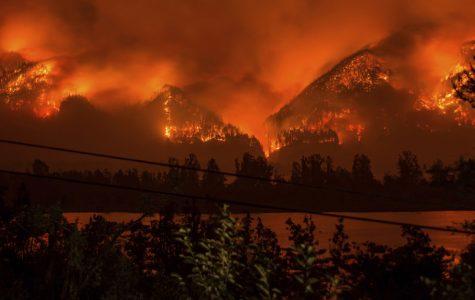 2017 Wildfire Season