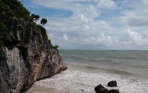 The Paraiso Beach Experience